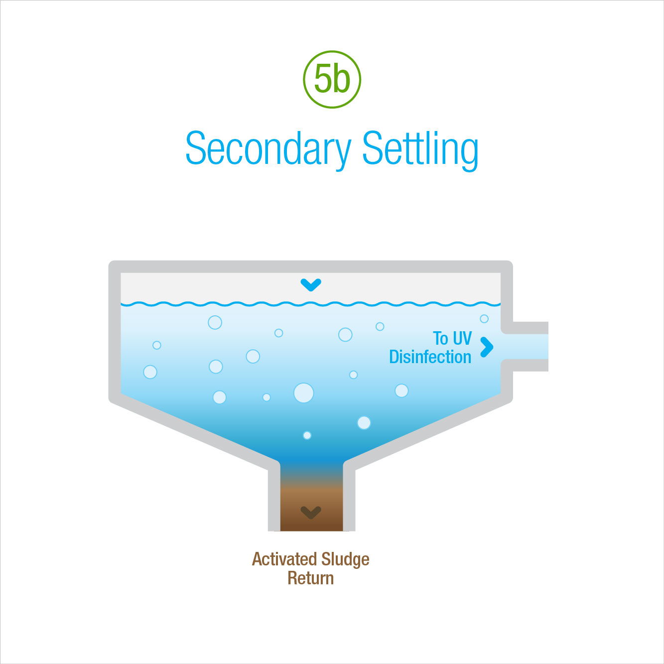 5b: Secondary Settling